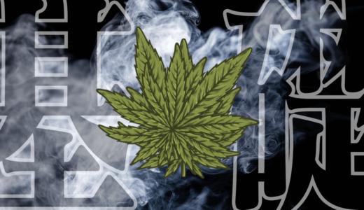 【厳選11選】CBDの楽しみ方は何種類あるの?禁煙~筋トレそしてセックス