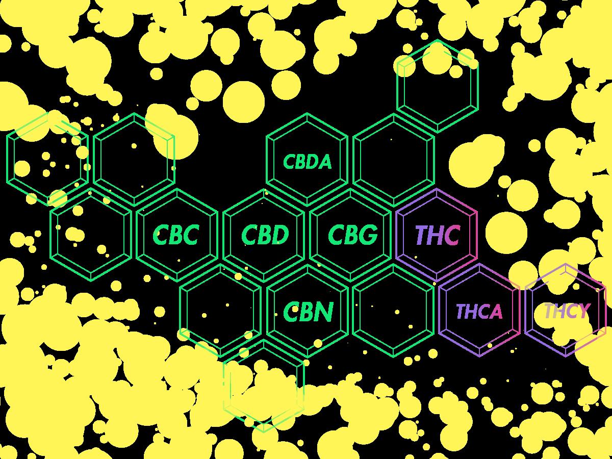 フルスペクトラム CBDの成分